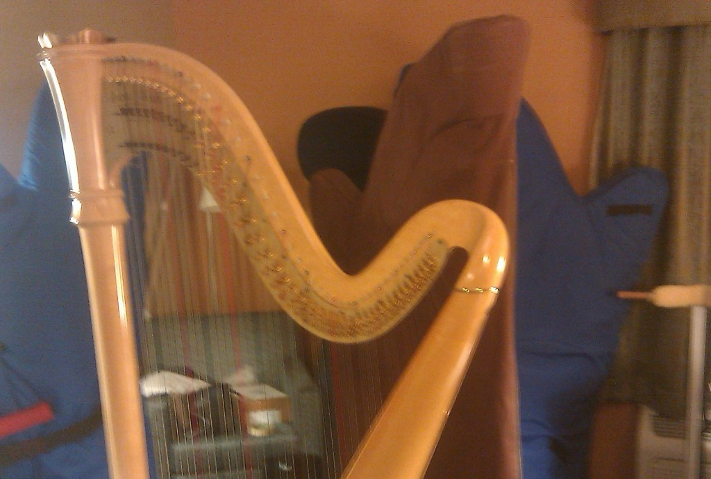 Several pedal harps, a blonde one in the foreground, the rest covered up